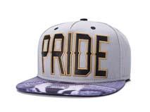 凯维帽业-广州帽厂订制加工2015新款拼色绣花字母嘻哈平额帽-PJ169
