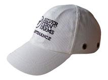 黑白视频体育直播-单色绣花头盔安全帽-TD005
