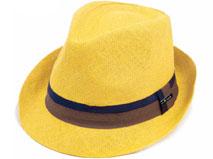 凯维帽业-纯羊毛纺织墨西哥西部牛仔款定型礼帽DM069