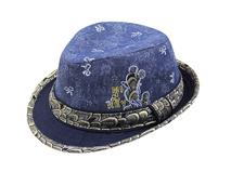 黑白视频体育直播-新款蓝色绣花儿童时装定型帽RM436