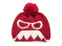 凯维帽业-女士时尚新款眼镜大胡子针织帽定制ZM076